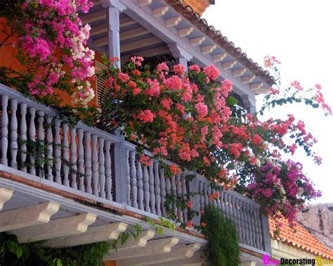 balcony flowers back porch flowers small garden ideas
