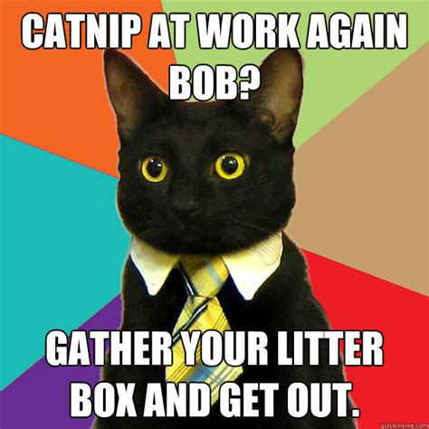 Working Cat Meme - catnip at work again cat meme cat planet cat planet