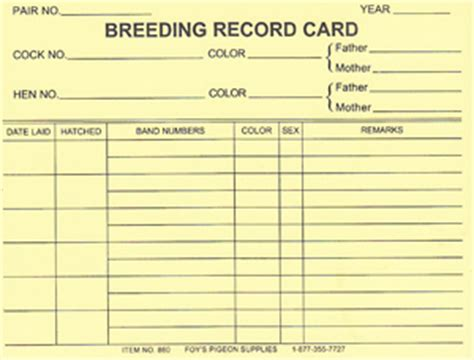 Card Record List Template by 860 Record Cards 25 Record Keeping