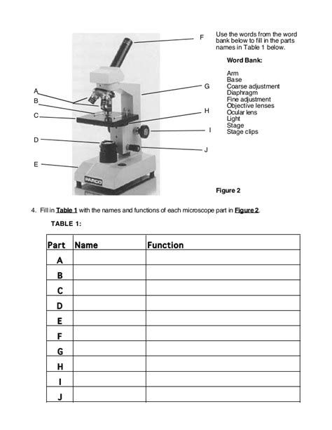 Microscope Introduction Worksheet