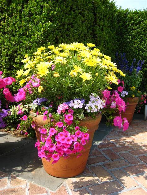 flower pots google search garden plant pots garden