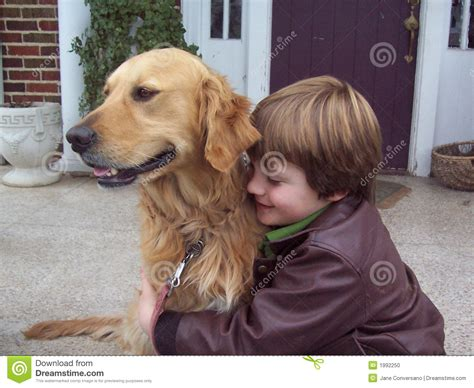 golden retriever with boy boy and golden retriever portrait stock photo image 1992250