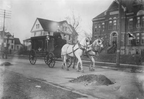 horse drawn funeral cart hekman digital archive