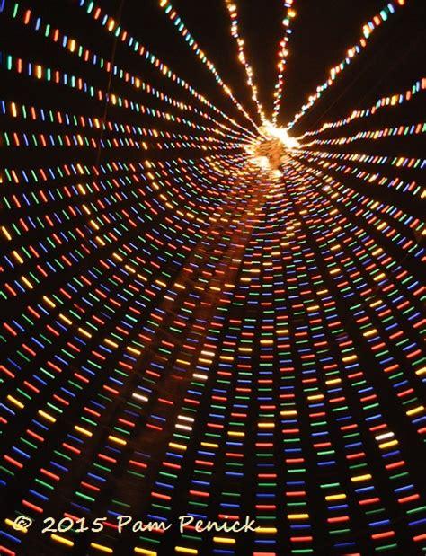 zilker tree lighting zilker tree lights skyline again digging