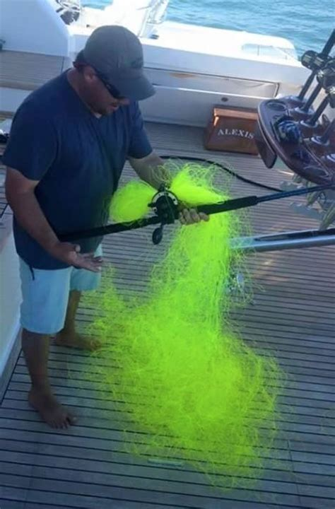 fishing fail  dreaded neon  tangle funny faxo