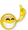 Kaos Emoji Smile Xl smilie harvester seite