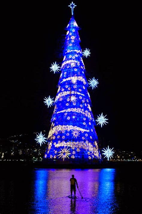 world s largest floating christmas tree in rio de janeiro