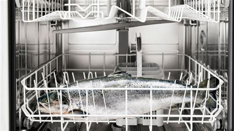 Seriously You Can Make Salmon In Your Dishwasher by Cool Hacks For Kitchen Appliances Realtor 174