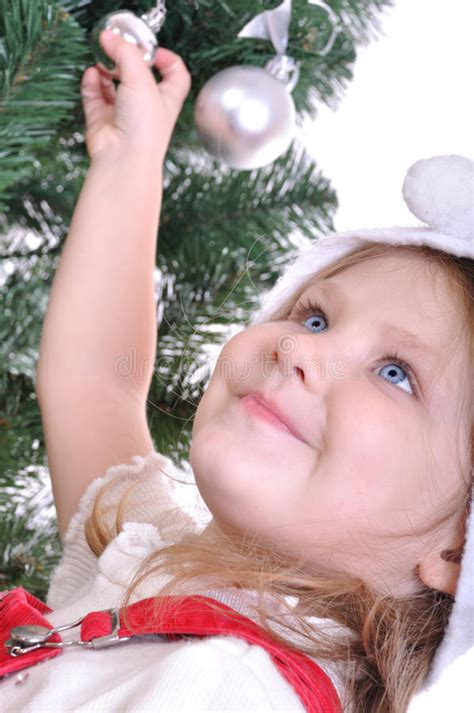 preparing a christmas tree stock images image 16967784