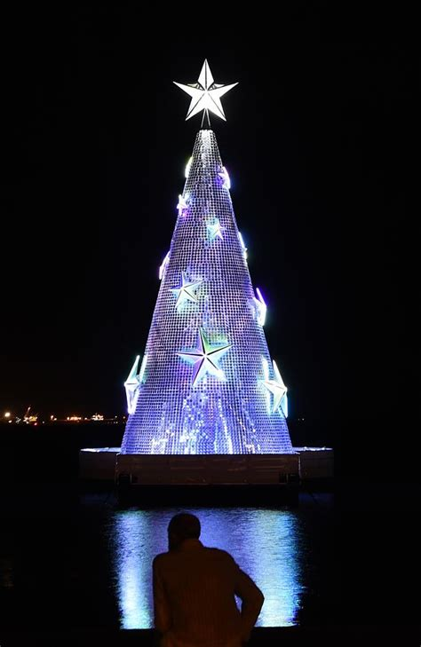 geelong s giant christmas tree a beacon for city mayor