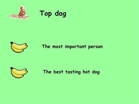best idioms idioms