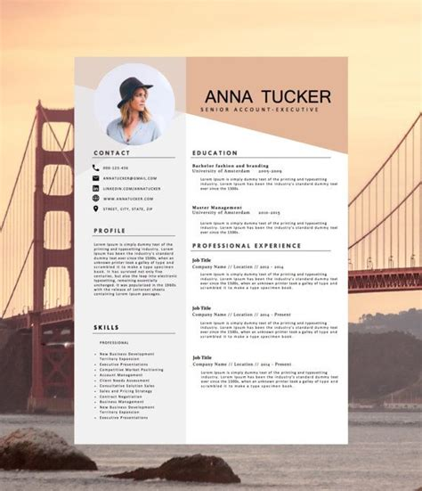 resume template 87 surprising curriculum vitae free format