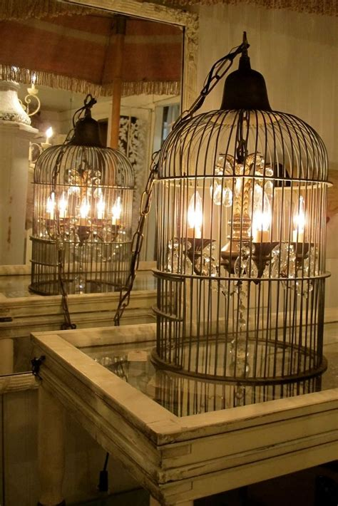 Bird Cage Light Fixture 17 Best Images About Flea Market Finds On Container Gardening Buckets And Vintage