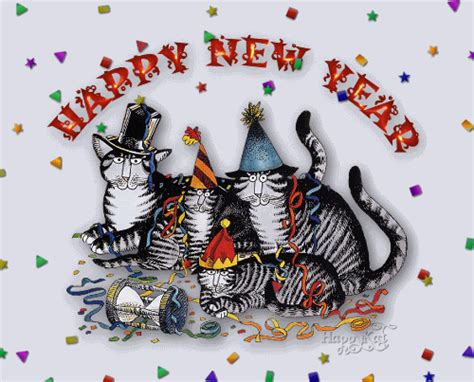 new year 2018 for tigers big cat rescue is caring for big cats and ending the trade