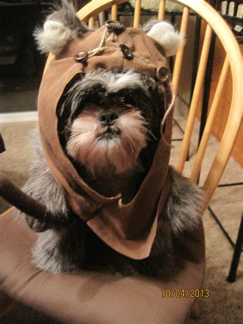 ewok hood fur dog halloween costume size large