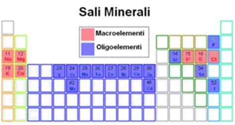 alimenti contenenti rame sali minerali