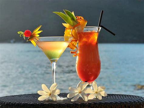 summer cocktail 25 stimulating summer drinks picshunger