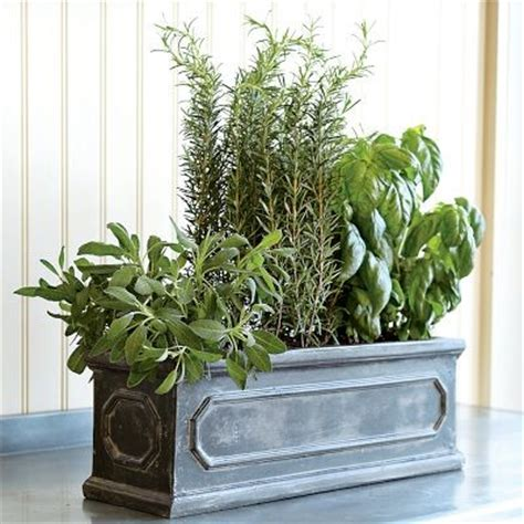 Herb window box traditional outdoor pots and planters