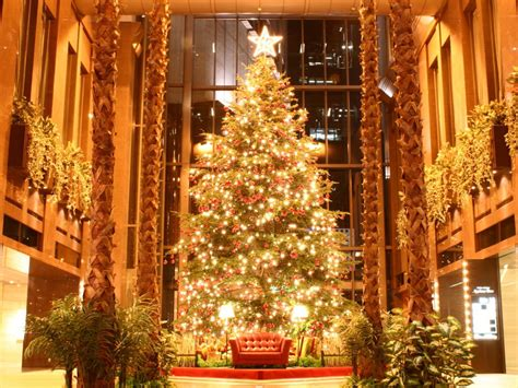 christmas tree images free picture photography download portrait gallery