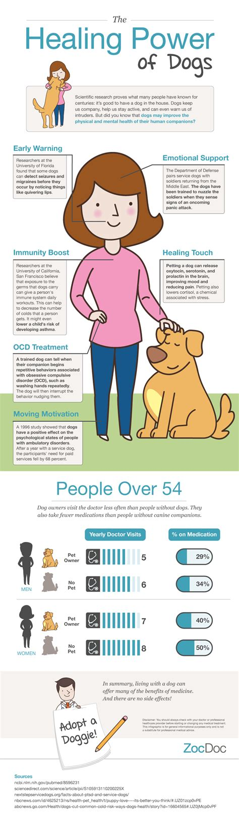 healing dogs infographic the healing power of dogs the dogington post