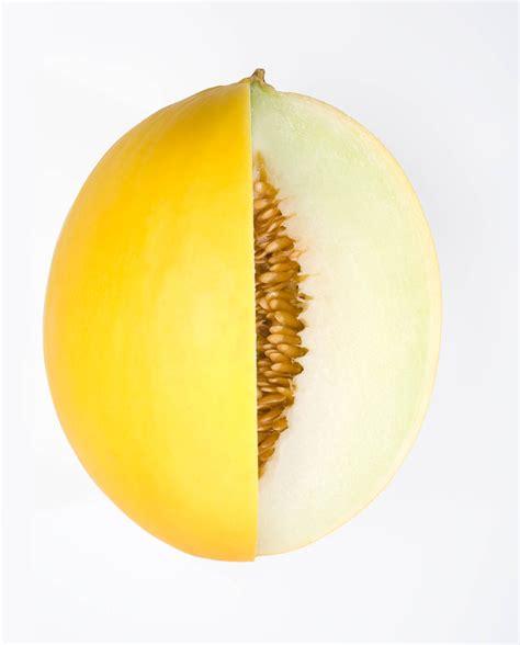 F1 Canary Sed gladial rz f1 hybrid melon allied botanical corporation