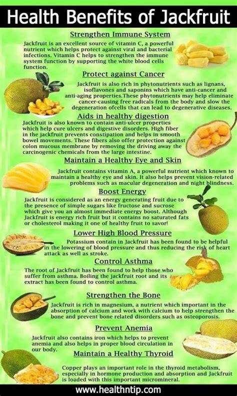 fruit 20 nutrition best 20 jackfruit nutrition ideas on