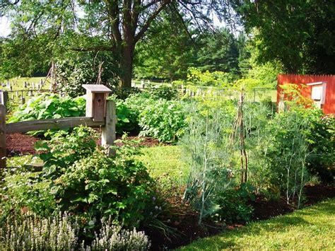 vegetable garden in home home vegetable garden design in backyard out the back