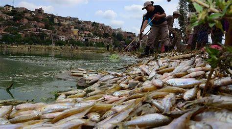 imagenes sin copyright rios d 237 a del agua con lagunas secas y r 237 os contaminados los
