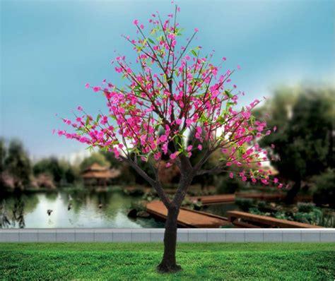 co de fiore rami decorativi esterni fiore di pesco albero di