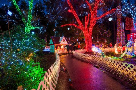 christmas lights in vancouver photo essay vancouver homes
