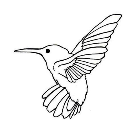 Hummingbird Coloring Page by Birds Ruby Throated Hummingbird Bird Coloring Page