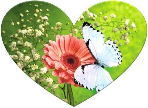 imagenes de corazones y flores mariposa y corazones imagenes de flores y mariposas car