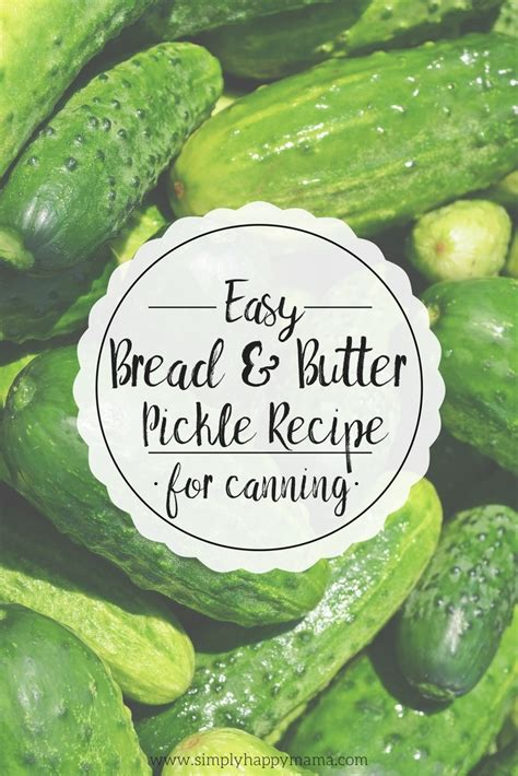 easy bread  butter pickle recipe  canning simply