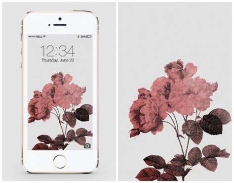 20 free iphone wallpapers to brighten up your phone brit co