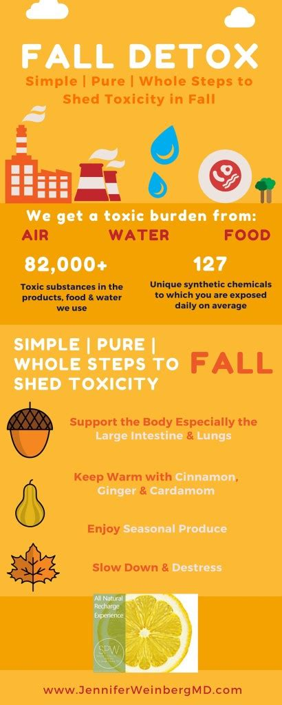 Fall Detox by A Fall Detox Cleanse Shed Toxicitydr L
