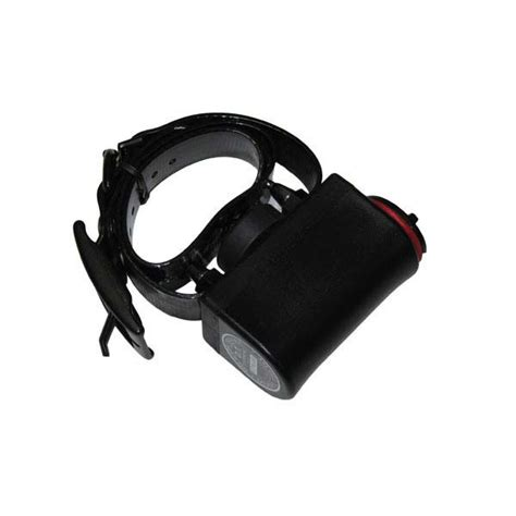 shock collar for big dogs d t systems big bark collar 190 dt