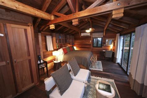 interior tree house best 25 modern master bedroom ideas on pinterest design bedrooms and interior d