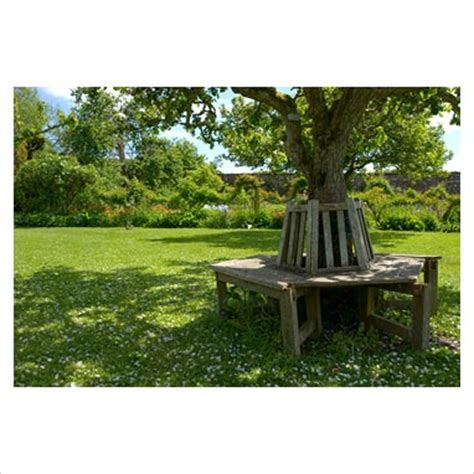 circular bench around tree gap photos garden plant picture library circular