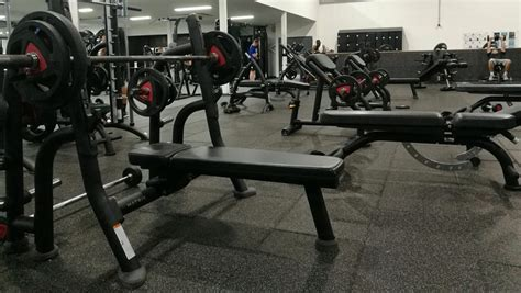 best weight benches reviews the best weight bench excellent weight bench reviews