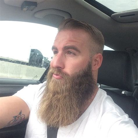 viking beards styles viking men bearditorium merzy bєaяd яєvσluтiση