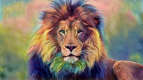 lion animals wildlife wallpapers hd desktop  mobile
