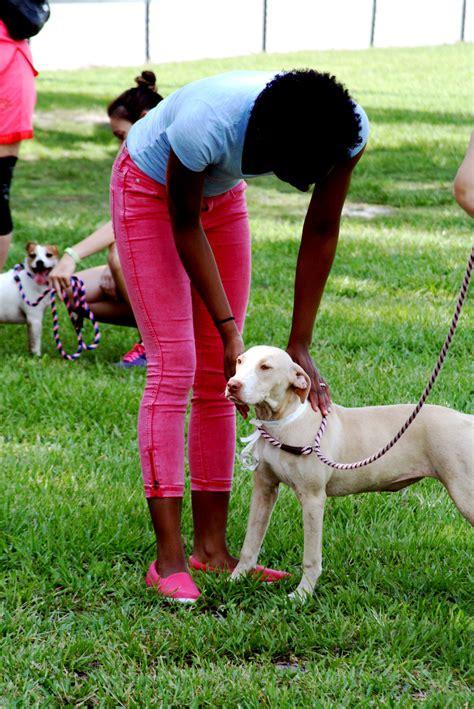 adoption events mega pet adoption event jacksonville magazine