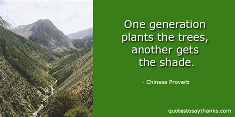 teacher   quote trees  shade   quotes