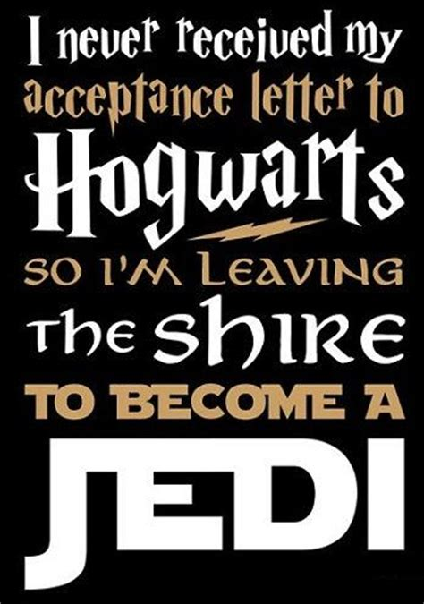 T Received Offer Letter Yet Cross Stitch Pattern For I Never Received My Acceptance Letter To Hogwarts On Etsy 5 00