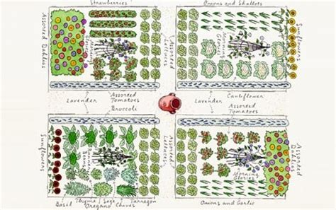 planning and layout of nursery garden layout plans sedl cansko