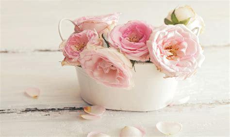 fiori shabby shabby chic e fiori arredare una casa romantica urbanpost