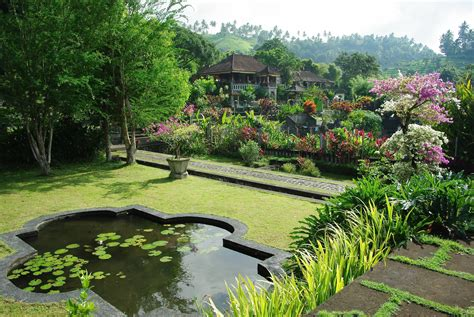 landscape design indonesia free images water lawn flower swimming pool backyard