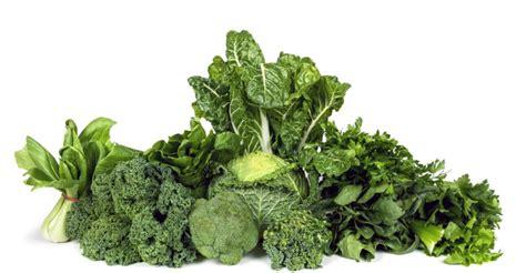 gren keaf produce types 11 health benefits of green leafy vegetables food series