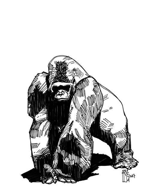 silverback tattoo silverback gorilla muscles drawing www pixshark