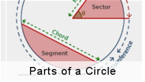 Sections Of A Circle by Other Resources